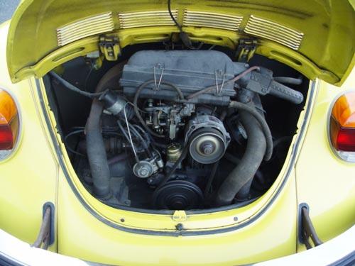 1975_beetle_4.jpg